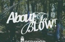 Gottwood special