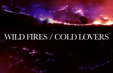 WILD FIRES-COLD LOVERS